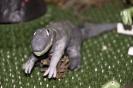 Wystawa dinozaurów przygotowana przez 7 letniego Dominika Klunder